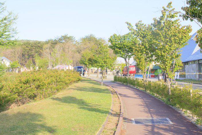 レジーナの森 散歩道