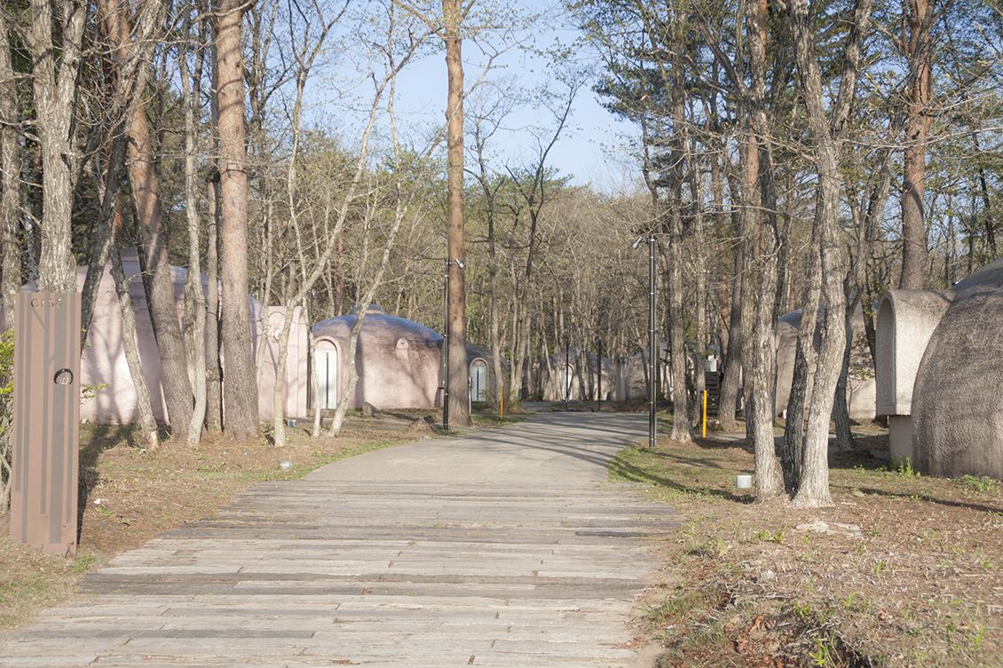 レジーナの森