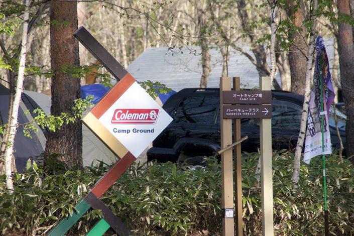 レジーナの森 coleman campground